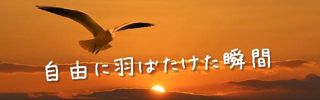 banner-1090835_640_mini
